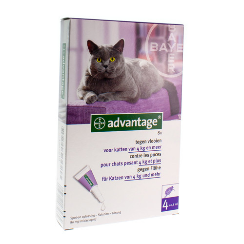 Advantage Voor Katten 80 Mg  4 Pipetten