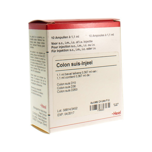 Colon Suis Injeel Amp 10X1,1ml Heel