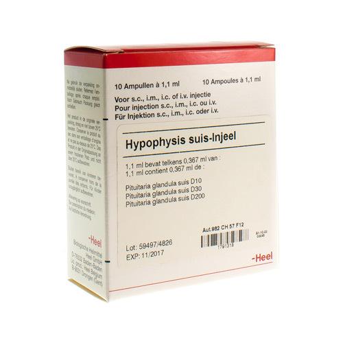 Hypophysis Suis Injeel Amp 10X1,1ml Heel