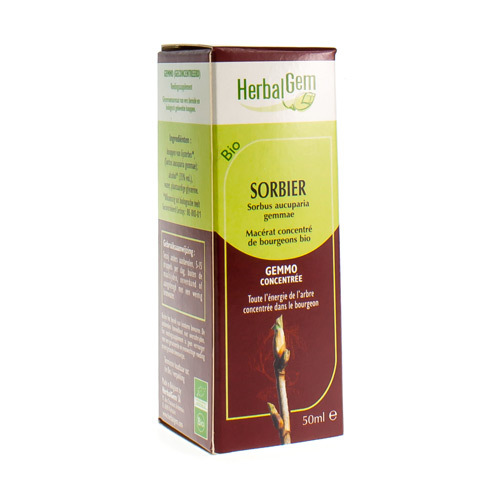 Herbalgem Sorbier Macerat Bio 50Ml