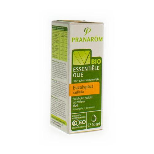 Eucalyptus Radie Eo Bio  2453 10Ml