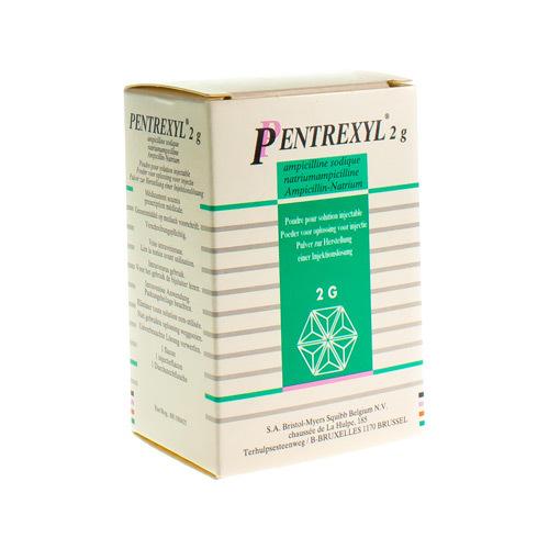 Pentrexyl 2 G (1 Injectieflacon)